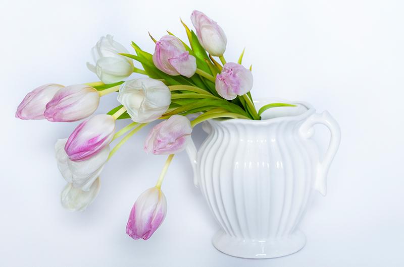Violet tulip Flower Bouquet - Spree Designs